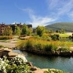 The Great Digest Adventure: Crystal Springs Resort
