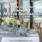 A Taste of the Sea : Dining at Molos Restaurant