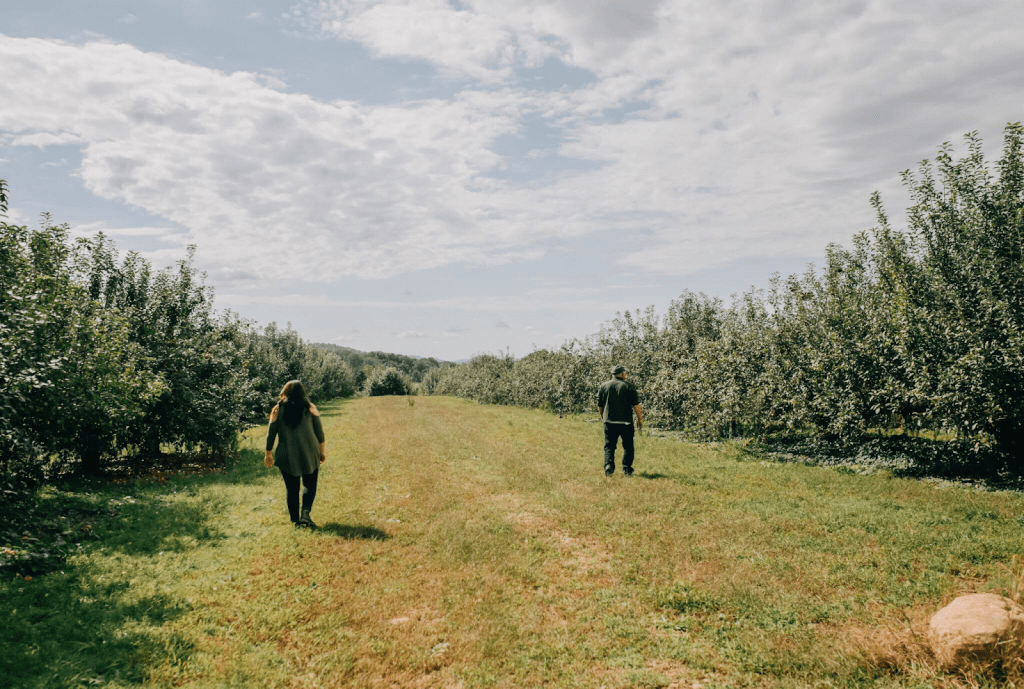 Best farms to go apple picking in New Jersey
