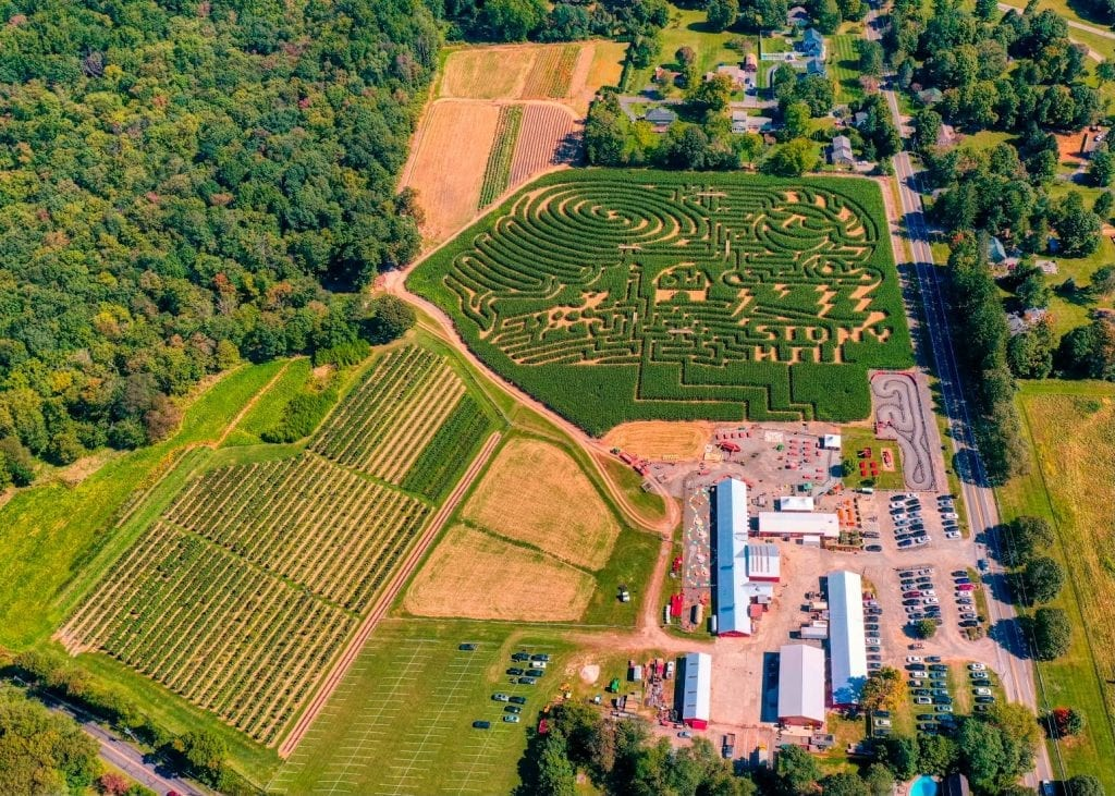 Pumpkin Picking Farms in New Jersey 2020