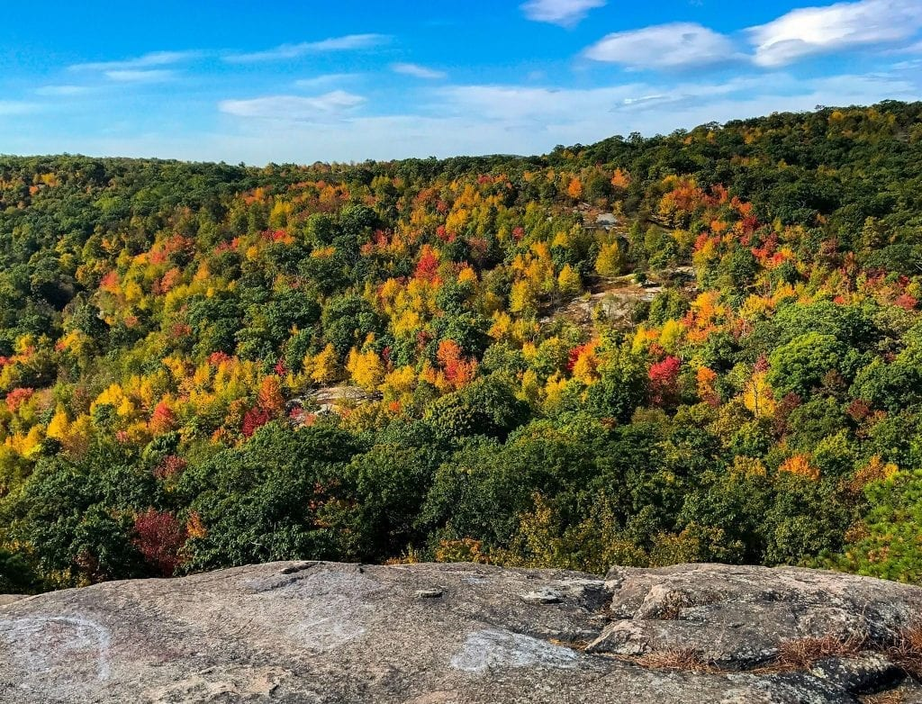 Best Places to See Fall Foliage in New Jersey