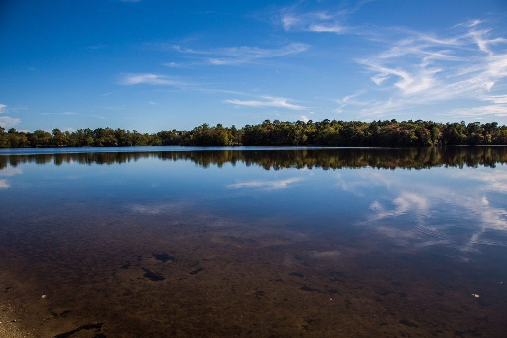 Parvin State Park Fall Foliage