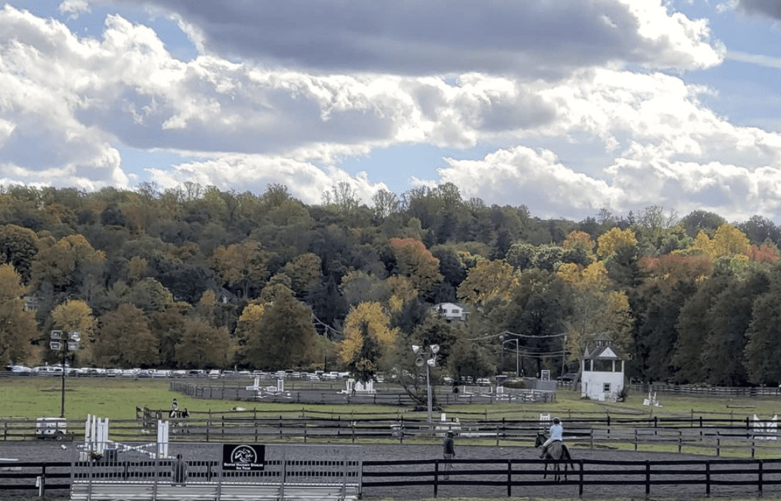 Horse Farms in New Jersey